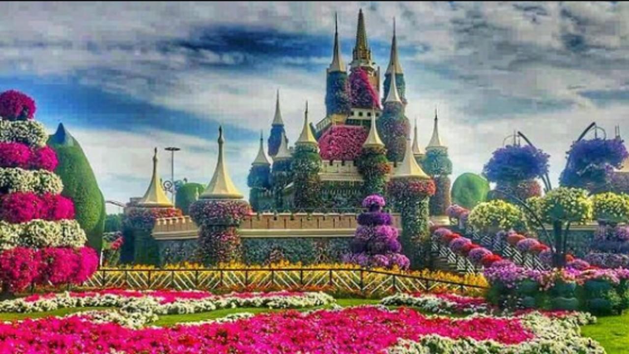 Mouni-Roy-Dubai-Miracle-Garden