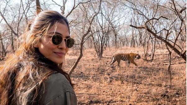 Malavika-Mohanan-and-the-Ranthambore-National-Park-tigers